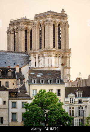 Notre Dame de Paris Cathedral Towers and Ile de la Cite in Early Morning Summer Light, Paris, 4th arrondissement, - Stock Photo