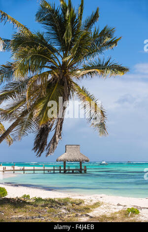 Wooden pier with thatched hut, Playa Blanca, Punta Cana, Dominican Republic, West Indies, Caribbean, Central America - Stock Photo