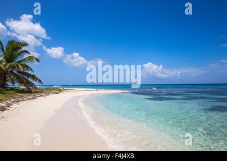 Catuano Beach, Saona Island, Parque Nacional del Este, Punta Cana, Dominican Republic, West Indies, Caribbean, Central - Stock Photo