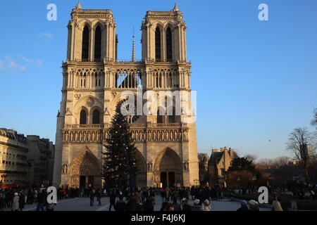 Tourists and Christmas tree outside Notre Dame de Paris Cathedral, Paris, France, Europe - Stock Photo