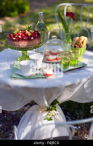 A table in a garden ready laid with cake and buns, Sweden. - Stock Photo