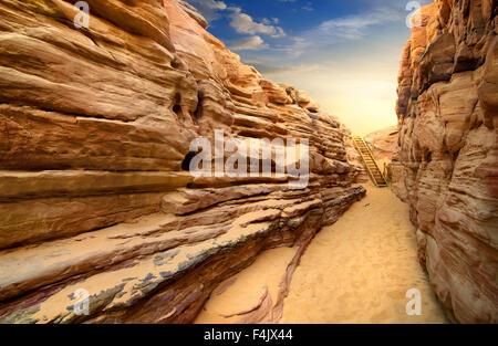 Sandy canyon in desert of Sinai at sunset - Stock Photo