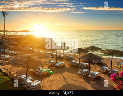 Red sea beach with parasols at sunset - Stock Photo