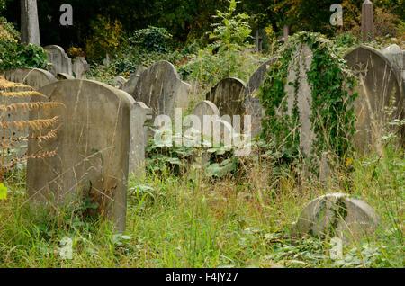 An overgrown graveyard - Stock Photo