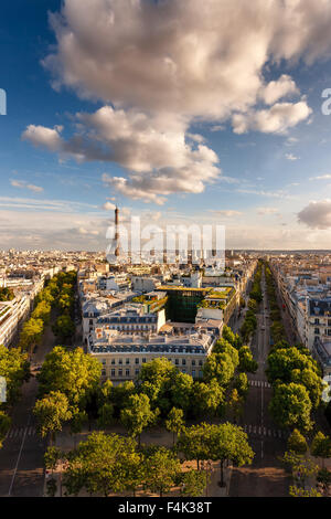 Paris from above: the famous Eiffel Tower and tree-lined Paris avenues (Iéna, Kleber) and their Haussmannian buildings. - Stock Photo