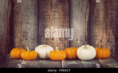 Mini pumpkins in a row against rustic wooden background - Stock Photo