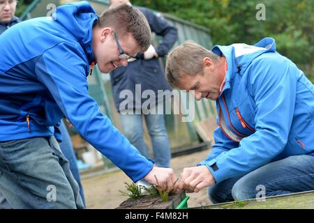 Handicapped  man Christoph Schmidt (left) works together with a non handicapped man in a garden, Germany, city of - Stock Photo