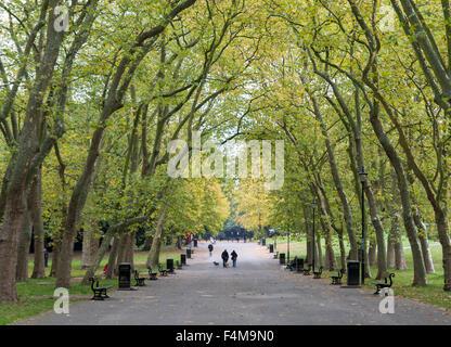 The main walkway of Crystal Palace Park,  London. - Stock Photo