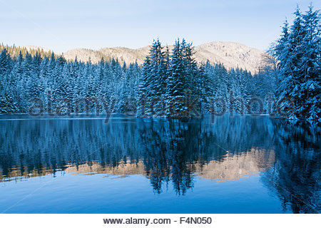 Beautiful view of snow dusted mountain peaks and trees reflected in icy lake waters of Rice Lake, as seen at dawn. - Stock Photo