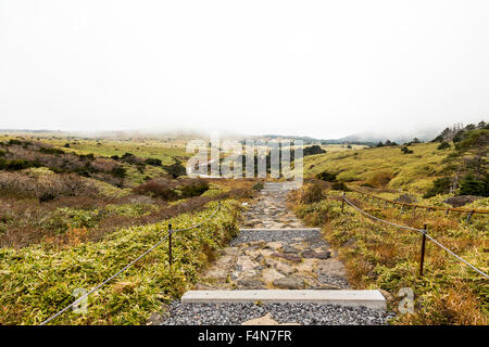 Hiking Trail in Jeju Island - Stock Photo