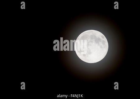 Full moon at night sky - Stock Photo