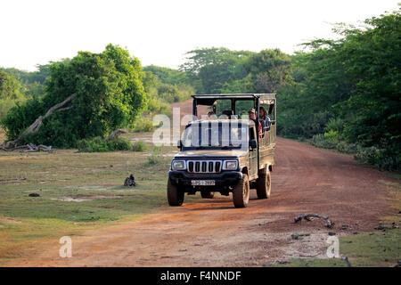 Safari vehicle, SUV, game drive with tourists in Yala National Park, Sri Lanka - Stock Photo