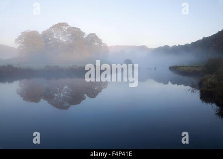 A copse of deciduous trees near Elterwater - Stock Photo