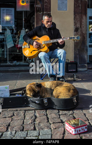 Dog sleeping in guitar case of busker playing music on the street - Stock Photo