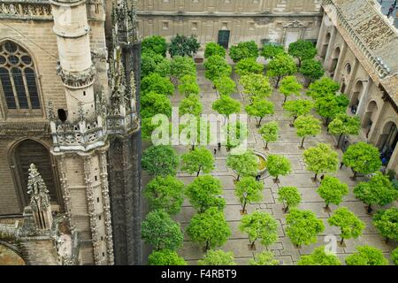 Patio de los Naranjos, Patio of the Oranges, from the Giralda bell tower, Seville Cathedral,  Andalucia, Spain, Europe Stock Photo