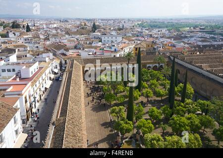 Gorgeous Patio De Los Naranjos Orange Tree Garden From The Bell Tower  With Fair Crdoba Patio De Los Naranjos Orange Tree Garden From The Bell Tower  Mezquita With Appealing Welwyn Garden City Population Also Garden Nursery Maryland In Addition Garden Centres Wiltshire And Laduree Covent Garden Menu As Well As Garden Centre Crowland Additionally How To Erect A Garden Fence From Alamycom With   Fair Patio De Los Naranjos Orange Tree Garden From The Bell Tower  With Appealing Crdoba Patio De Los Naranjos Orange Tree Garden From The Bell Tower  Mezquita And Gorgeous Welwyn Garden City Population Also Garden Nursery Maryland In Addition Garden Centres Wiltshire From Alamycom