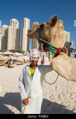 Tourist camel and owner on beach at JBR Jumeirah Beach Residences in Marina district of Dubai United Arab Emirates - Stock Photo