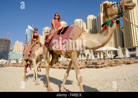 Tourists riding camel on beach at JBR Jumeirah Beach Residences in Marina district of Dubai United Arab Emirates - Stock Photo