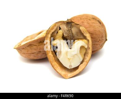 freshly harvested walnuts isolated on white background - Stock Photo