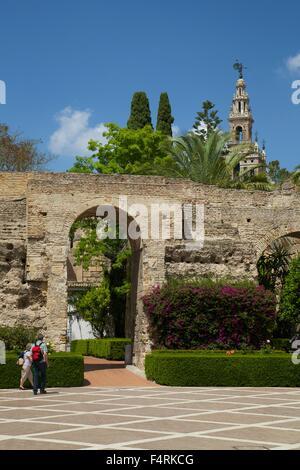 Courtyard garden, Alcazar, Seville, Andalucia, Spain, Europe - Stock Photo