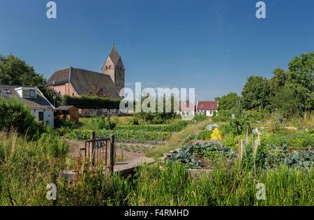 Netherlands, Europe, Holland, Bedum, Groningen, city, village Stock ...