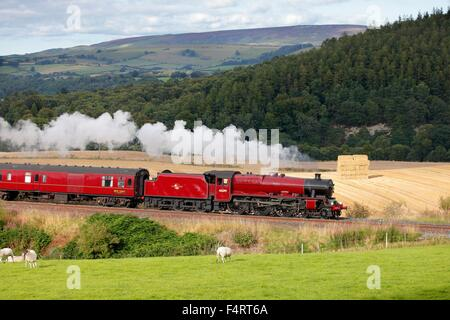 Steam locomotive LMS Jubilee Class 45699 Galatea near Low Baron Wood Farm, Armathwaite ,Eden Valley, Cumbria, England, - Stock Photo
