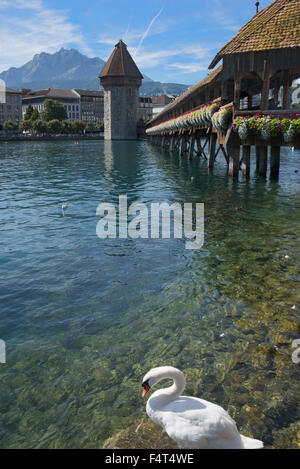 Chapel Bridge and Water Tower Lucerne Switzerland - Stock Photo