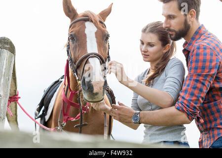 Couple adjusting bridle on horse - Stock Photo