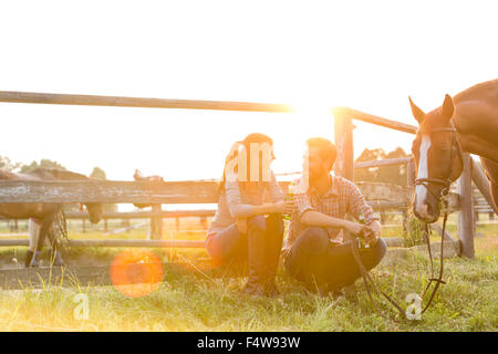 Couple with horse talking in sunny rural pasture - Stock Photo