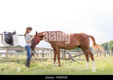 Woman preparing horse for horseback riding in rural pasture - Stock Photo