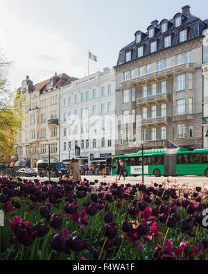 Sweden, Skane, Malmo, Gustav Adolfs Torg, View of busy street in springtime - Stock Photo