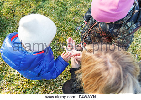 Sweden, Sodermanland, Jarna, Boy (12-17 months) and girl (2-3) playing with mother - Stock Photo