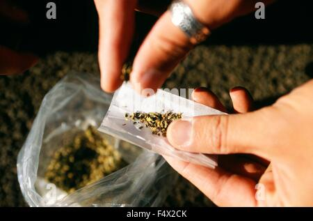 An addict rolls a joint using a synthetic cannabinoid called Spice use to spray on marijuana in order to enhance - Stock Photo