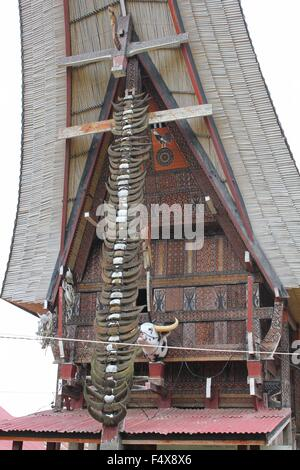 PALAWA, INDONESIA - JULY 3 2012: typical Torajan ethnicity ancestral houses, called Tongkonan, in a dull day - Stock Photo