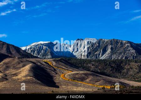 Fall color along Sherwin Creek near Mammoth Lakes California in the Eastern Sierra Nevada mountains of California - Stock Photo