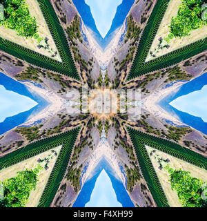 A kaleidoscopic image of a vineyard in New Zealand - Stock Photo