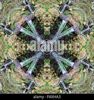 A kaleidoscopic image in a garden - Stock Photo