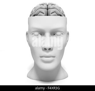 Human head with brain - Stock Photo
