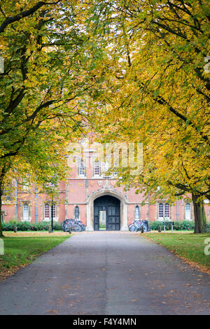 Cambridge, UK. 24th October, 2015. Vibrant autumn colours brighten an overcast day in Cambridge. The avenue of trees - Stock Photo