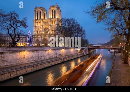 Notre Dame de Paris Cathedral and Christmas Tree Illumination in evening with the Seine River, Ile de la Cite, Paris, France