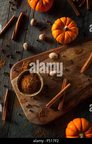 Organic Raw Pumpkin Spice with Cinnamon Allspice Nutmeg and Ginger - Stock Photo