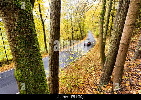 Car Street Autumn Winter Hazards leaves slippery danger driving dangerously ripe wet rainy weather climate cold - Stock Photo