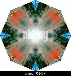 A kaleidoscopic image - Stock Photo