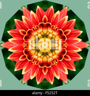 A kaleidoscopic image of a flower - Stock Photo