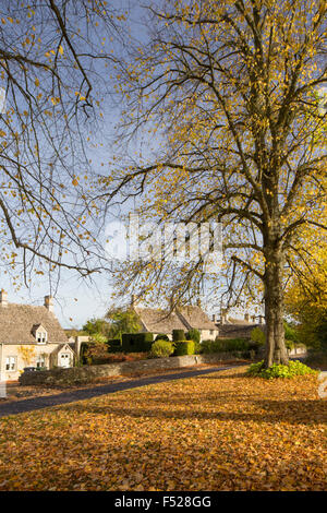 Autumn in the Cotswold village of Windrush, Gloucestershire, England, UK - Stock Photo