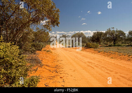 Long red sandy road, hemmed by native woodlands, stretching to horizon & blue sky at Mungo National Park in outback - Stock Photo