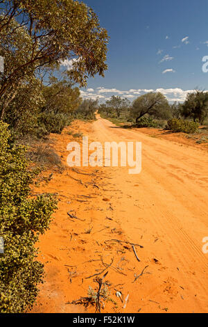 Long red sandy road, hemmed by native woodlands, stretching to horizon & blue sky at Mungo National Park in outback Australia