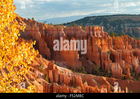 View on Navajo Trail, Bryce Canyon, Utah, USA - Stock Photo