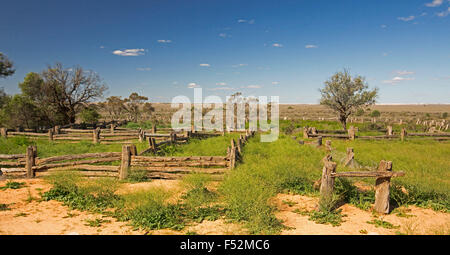 Panoramic view of old stock yards made from cypress pine in Australian outback landscape of emerald grass after - Stock Photo