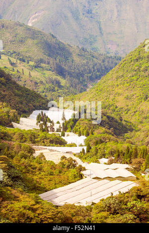 Greenhouse In Highlands Of Ecuador Approx 3000M Altitude - Stock Photo